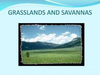 GRASSLANDS AND SAVANNAS