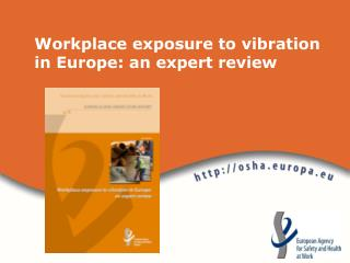 Workplace exposure to vibration in Europe: an expert review
