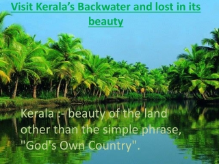 Holidays in Kerala