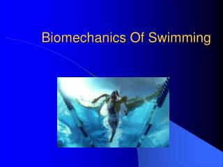 Biomechanics Of Swimming