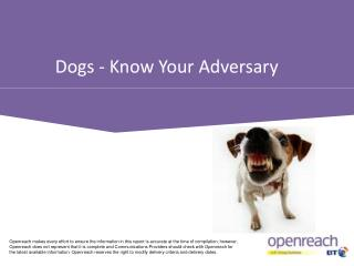Dogs - Know Your Adversary