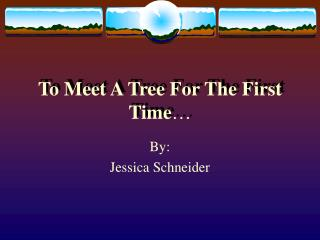 To Meet A Tree For The First Time
