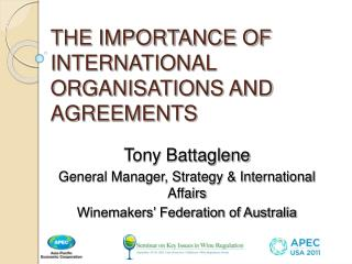 THE IMPORTANCE OF INTERNATIONAL ORGANISATIONS AND AGREEMENTS