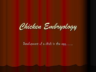 Chicken Embryology