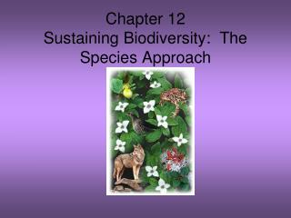Chapter 12 Sustaining Biodiversity:  The Species Approach