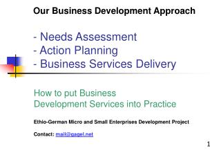 Our Business Development Approach  - Needs Assessment - Action Planning - Business Services Delivery