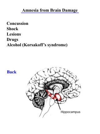 Amnesia from Brain Damage