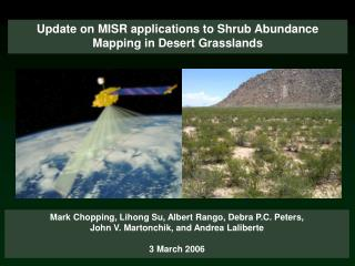 Update on MISR applications to Shrub Abundance Mapping in Desert Grasslands