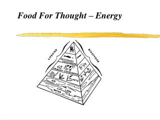 Food For Thought   Energy