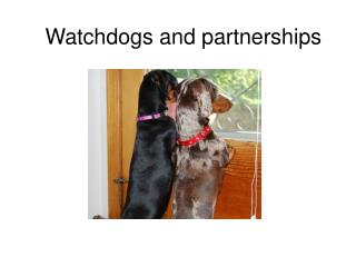 Watchdogs and partnerships