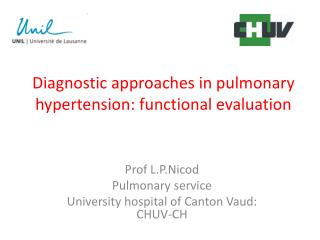 Diagnostic approaches in pulmonary hypertension: functional evaluation