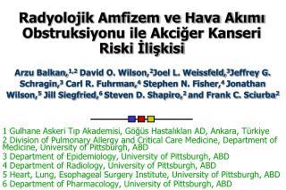 Radyolojik Amfizem ve Hava Akimi Obstruksiyonu ile Akciger Kanseri Riski Iliskisi