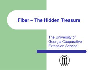 Fiber   The Hidden Treasure