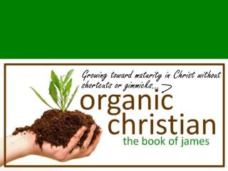 Growing toward maturity in Christ without