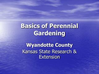 Basics of Perennial Gardening