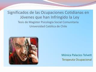 Significados de las Ocupaciones Cotidianas en J venes que han Infringido la Ley  Tesis de Mag ster Psicolog a Social Com