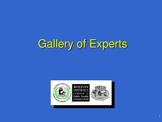 Gallery of Experts