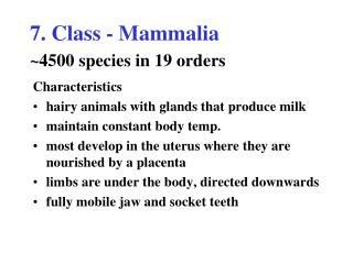 7. Class - Mammalia 4500 species in 19 orders