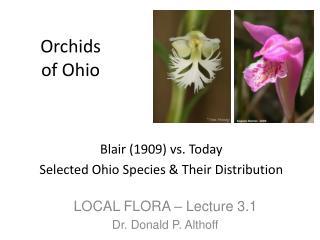 Orchids of Ohio