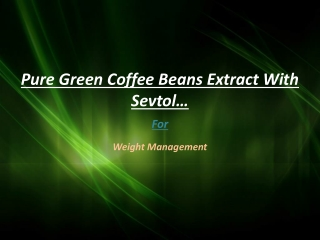 Pure Green Coffee Beans Extract With Sevtol for Weight Menag