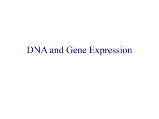 DNA Microarray Replication