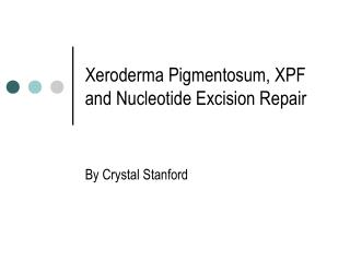 Xeroderma Pigmentosum, XPF and Nucleotide Excision Repair