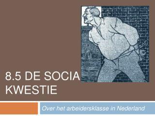 8.5 DE SOCIALE KWESTIE