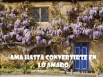 AMA HASTA CONVERTIRTE EN  LO AMADO