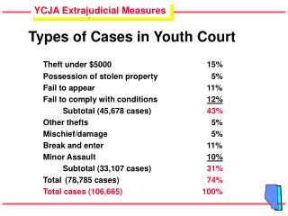 Types of Cases in Youth Court