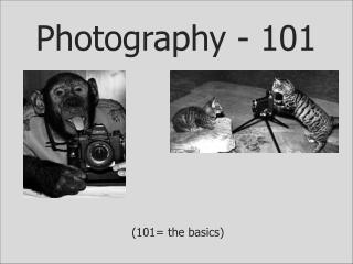 Photography - 101