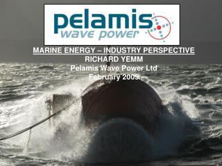 MARINE ENERGY   INDUSTRY PERSPECTIVE RICHARD YEMM Pelamis Wave Power Ltd February 2009