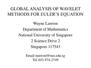 GLOBAL ANALYSIS OF WAVELET METHODS FOR EULER S EQUATION
