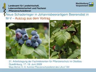Neue Schaderreger in Johannisbeerartigem Beerenobst in M-V   Auszug aus dem Vortrag