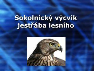 Sokolnick  v cvik jestr ba lesn ho