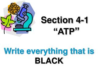 Section 4-1  ATP