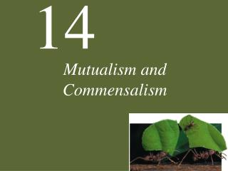 Mutualism and Commensalism