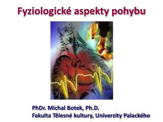 Fyziologick  aspekty pohybu