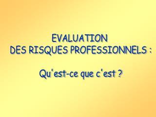 EVALUATION  DES RISQUES PROFESSIONNELS :  Quest-ce que cest