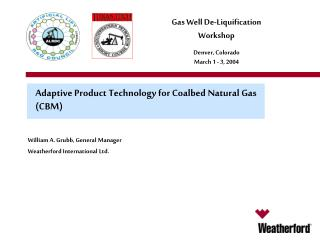 Adaptive Product Technology for Coalbed Natural Gas CBM