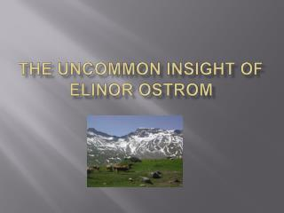 The Uncommon Insight of Elinor Ostrom