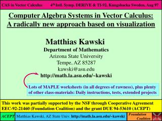 Computer Algebra Systems in Vector Calculus:  A radically new approach based on visualization