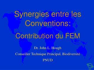 Synergies entre les Conventions:  Contribution du FEM