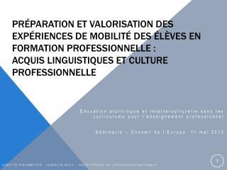 Pr paration et valorisation des exp riences de mobilit  des  l ves EN formation PROFESSIONNELLE : acquis linguistiqueS e