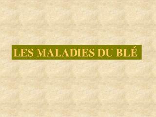 LES MALADIES DU BL