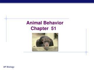 Animal Behavior Chapter  51