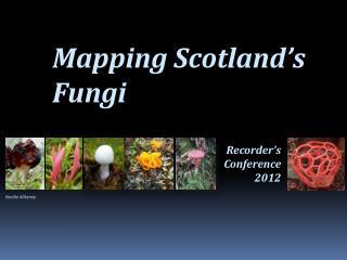Mapping Scotland s Fungi