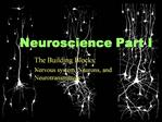 Neuroscience Part I