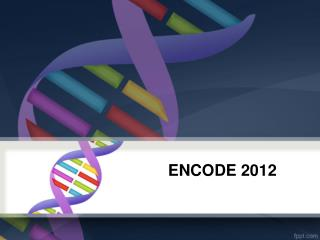 ENCODE 2012