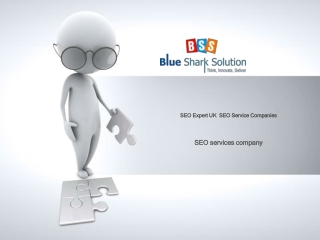 SEO Service Companies, Search Engine Ranking Service