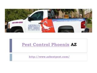 Pest Control Phoenix AZ